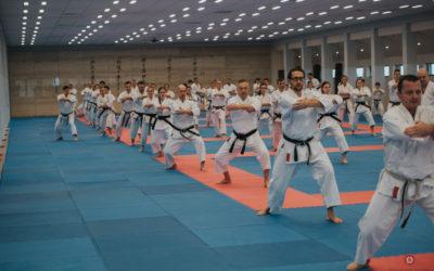 Kurs Mistrzowski kończący rok treningowy